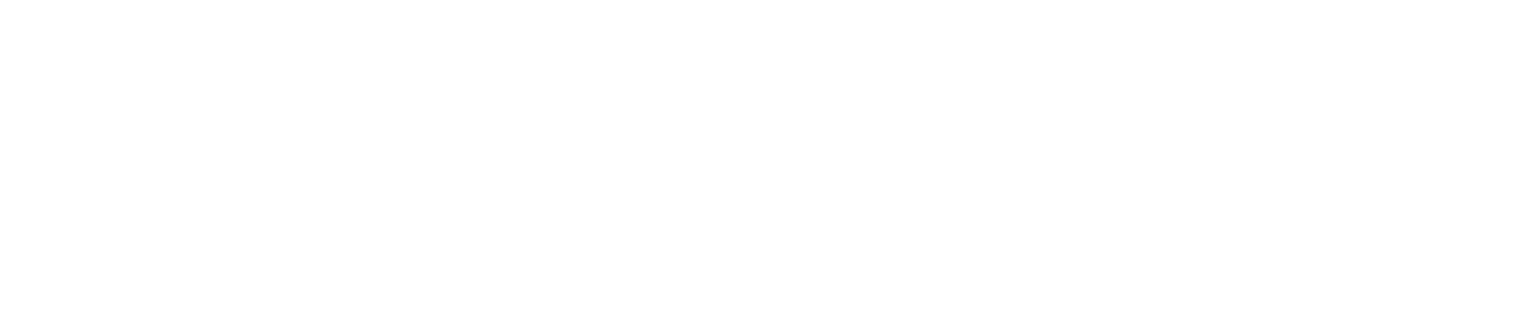 Global Voyages Group